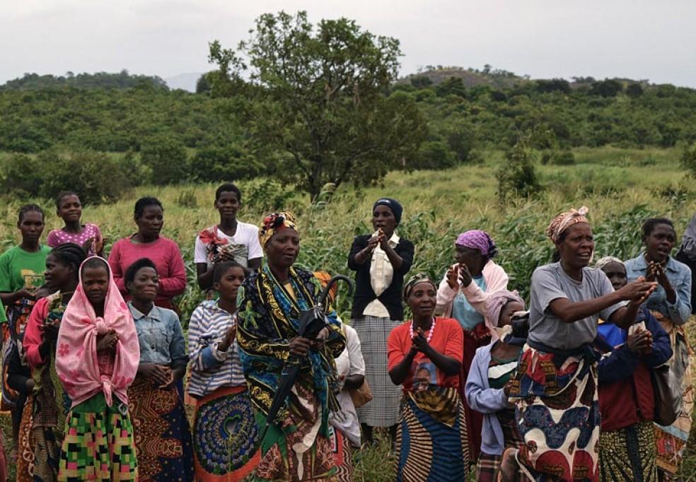 LIMS – Extensão ao Nível de 6 Províncias do Centro e Sul de Moçambique