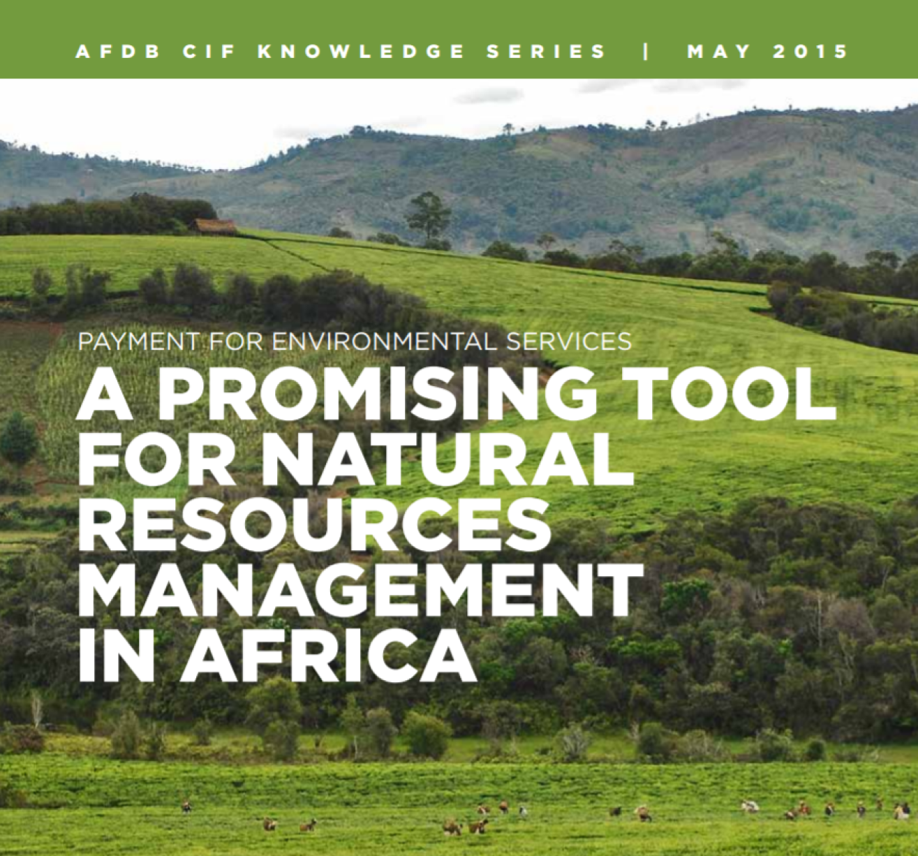 Payment for environmental services – A promising tool for natural resource management in Africa